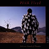 Delicate Sound Of Thunder (2 CD)par Pink Floyd