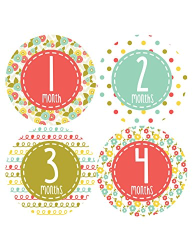 Months in Motion 366 Monthly Baby Stickers Baby Girl Months 1-12 Milestone - 1