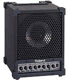 Roland Cube Monitor 30W CM-30