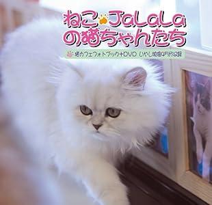 「ねこ・JaLaLa」の猫ちゃんたち [DVD]