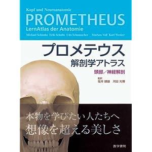 プロメテウス解剖学アトラス 頭部/神経解剖