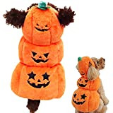 OHMI ペット服 犬用 ハロウィン コスプレ かぼちゃ 衣装 コスチューム 小型犬 ~ 中型犬 サイズ (M)