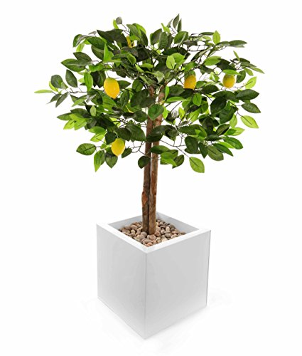 closer-2-nature-ft041lw-de-plantas-de-citricos-artificial-de-110-cm