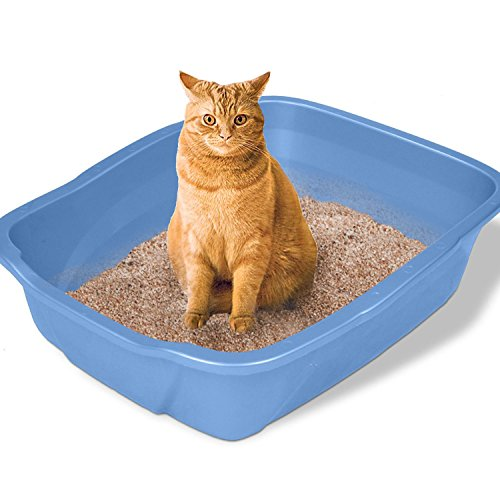 Large Cat Litter Box Big Huge Kitty Pan Pet Toilet Clean Mat:New by WW shop (Extra Large Litter Pan compare prices)