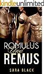 Romulus und Remus (Erotische Dreierbe...