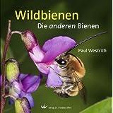 "Wildbienen: Die anderen Bienenvon ""Paul Westrich"""
