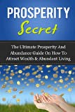 img - for Prosperity Secret: The Ultimate Prosperity And Abundance Guide On How To Attract Wealth & Abundant Living book / textbook / text book