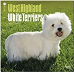 West Highland White Terriers 2015 Squ...