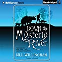 Down the Mysterly River Audiobook by Bill Willingham Narrated by Dick Hill