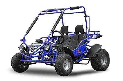 maxi-buggy-200cc-oil-cooled-e-start-automatic-cvt-with-reverse-gear-off-road-quad-atv-bike-midi-blue