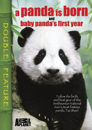 Baby First Tv Dvd front-218121