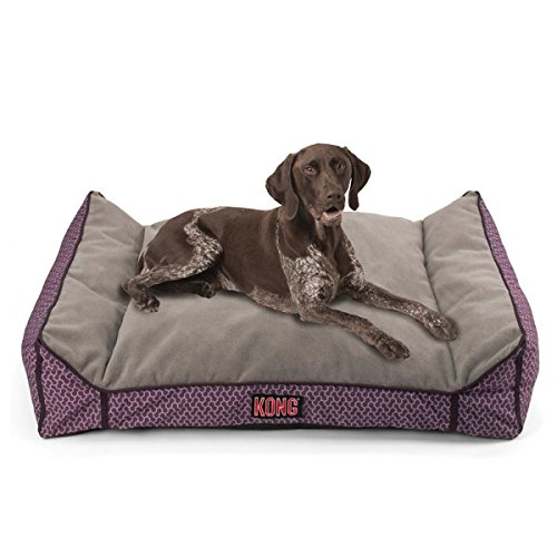 dog whatisbackpain kong s pet pro info bed large