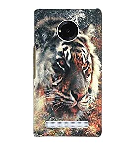 MICROMAX YU YUPHORIA TIGER Designer Back Cover Case By PRINTSWAG
