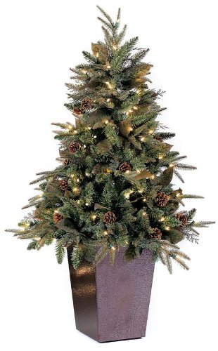 Best Christmas Tree Deals For 2016 XpressionPortal