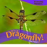 It's a Dragonfly! price comparison at Flipkart, Amazon, Crossword, Uread, Bookadda, Landmark, Homeshop18