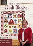 Quilt In A Day Quilt Blocks on American Barns (Quilt in a Day Series)