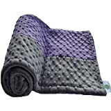 "Cozy Wozy Signature Minky Baby Blanket, Purple/Charcoal Gray, 30"" X 36"""