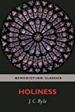 img - for Holiness book / textbook / text book