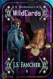 'NetWalkers Book 2: WildCards