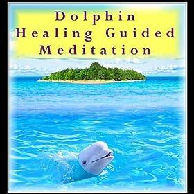 Dolphin Healing Guided Meditation