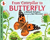 Deborah Heiligman From Caterpillar to Butterfly (Lets read & find out science stage 1)