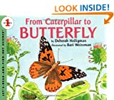 From Caterpillar to Butterfly (Lets read & find out science stage 1)