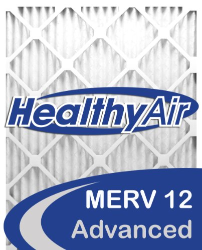 Healthy Air 16x25x5L1M12-2 Lennox X6672 Replacement Pleated Furnace Air Filter, Box of 2 (Air Filter X6672 compare prices)