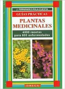 Plantas Medicinales - Recetario Basico (Spanish Edition): Fernandez