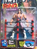 WCW/NWO Ring Fighters: Bret Hart