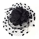 Gothic Dinner Tea Party Feather Fascinator Mini Veil Cocktail Hat --Black