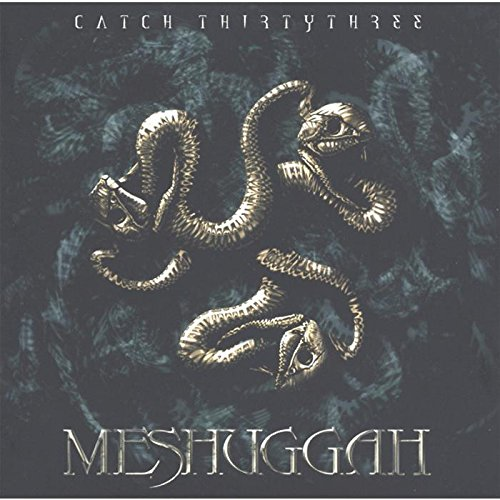 Meshuggah - Catch Thirty Three - Zortam Music