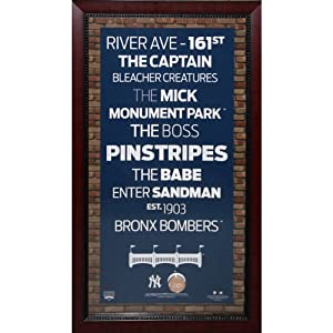 MLB Subway Sign Wall Art 16x32 Frame w  Authentic Dirt by Steiner Sports