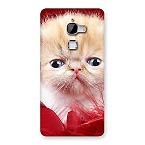 Kitty In Red Fur Back Case Cover for LeTv Le Max