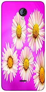 Snoogg Daisies Designer Protective Back Case Cover For Micromax Unite 2 A106