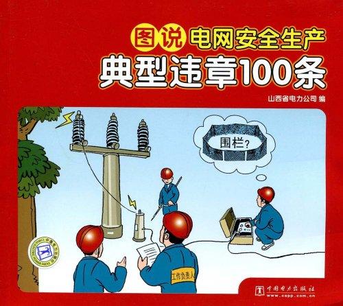 图说电网安全生产典型违章100条/山西省电力公司:图书