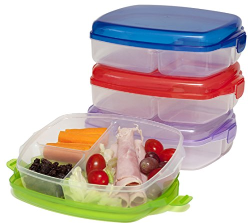 lunch box large plastic bento boxes lunch boxes set of 4 non leakproof lunchboxes home. Black Bedroom Furniture Sets. Home Design Ideas