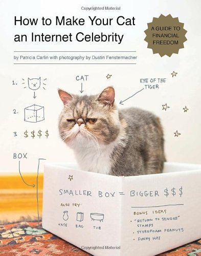 How to Make Your Cat An Internet Celebrity /Anglais