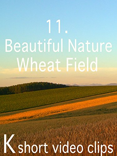 Clip: 11.Beautiful Nature--Wheat Field