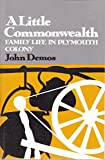 A Little Commonwealth: Family Life in Plymouth Colony (Galaxy Books) (0195013557) by John Demos