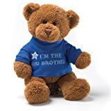 "Gund I'm The Big Brother Message 12"" Bear Plush"