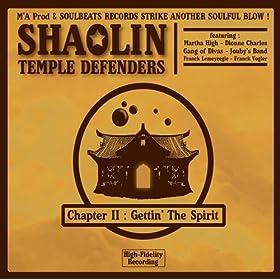 Shaolin Temple Defenders - International Soul