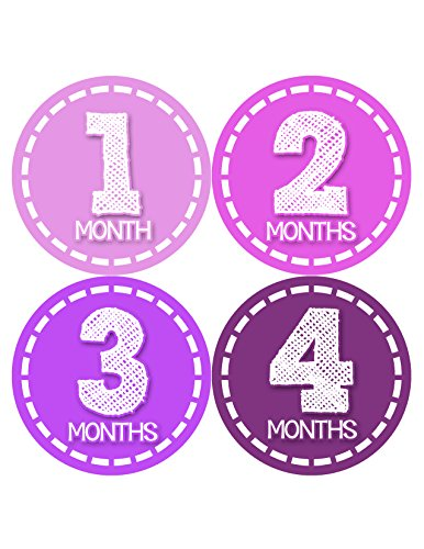 Months in Motion 436 Monthly Baby Stickers Age Sticker Photo Prop Newborn Girl