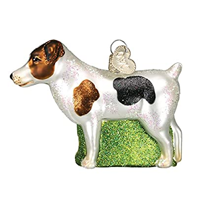 Old World Christmas Jack Russell Terrier Glass Blown Ornament
