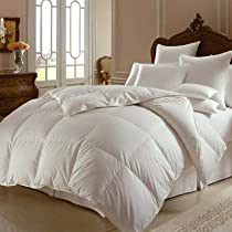 Inspirational Mirage Polish Goose Down Comforter in White