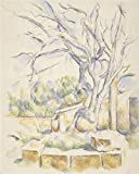 The Perfect Effect Canvas Of Oil Painting 'Pistachio Tree In The Courtyard Of The Chateau Noir,1906 By Paul Cezanne' ,size: 16x20 Inch / 41x51 Cm ,this Reproductions Art Decorative Canvas Prints Is Fit For Wall Art Decoration And Home Artwork And Gifts