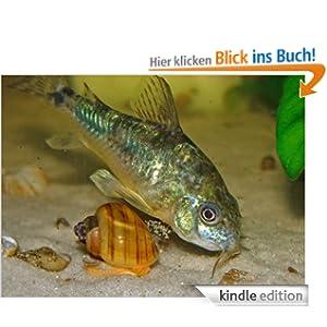 Fischfutter selber machen