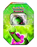 Pokemon Trading Card Game: Heartgold And Soulsilver Collector'S Tin - Meganium