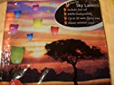 2X Fire Fly Sky Lanterns
