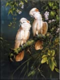 Salmon Crested Cockatoos by Michael Jackson Tile Mural for Kitchen Backsplash Bathroom Wall Tile Mural