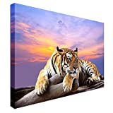 Tiger at sunset time - Canvas Art Cheap Wall Print Home Interior 20x30 inches Canvas Art Cheap Wall Print - high quality, classic style canvas prints, premium wooden frames